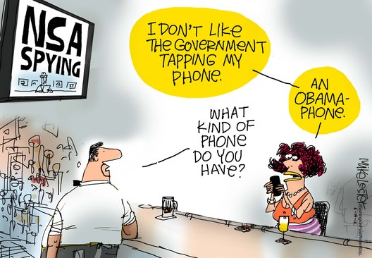 2013-06-17-brief-cartoon nsa spying