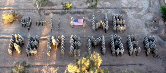 "9/11 spelled out by Marines, ""We Remember."""