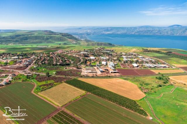 Golan Heights- Bnei Yehuda