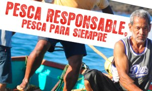 costa rica fishermen's cooperative pescaresposablepara-siempre