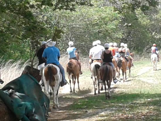 COSTA RICA horseback-riding-tourHORSEBACK RIDING TOUR GUANACASTE PROVINCE COSTA RICA VOLCANOES