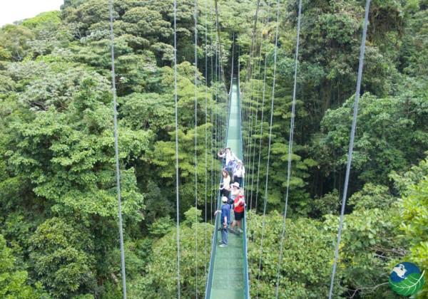 COSTA RICAN SUSPENSION BRIDGE