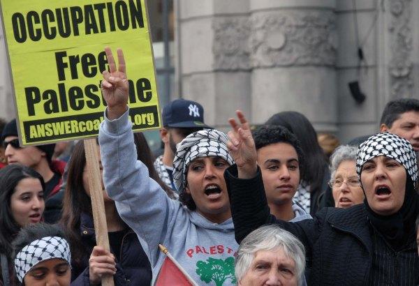 andrew palestines p_0028