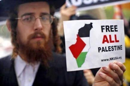 andrew samslifeinjeddah-palestine