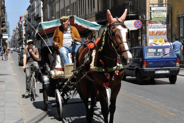 Palermo_Sicily_Horse_carriage