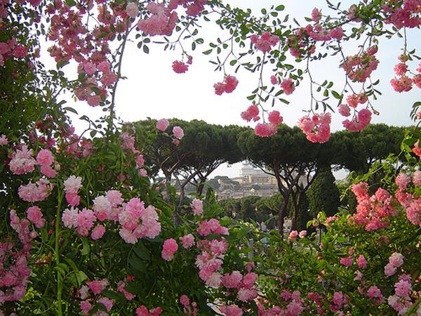 Roman Rosa Garden