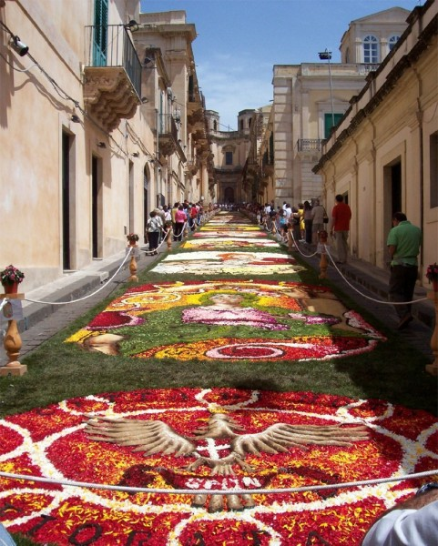 GREAT PIX OF FLOWERS infiorata