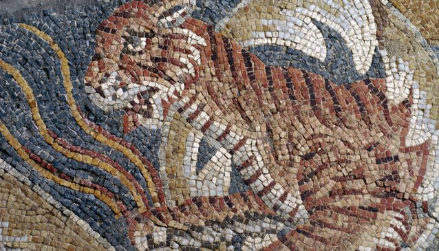 Tellaro mosaic
